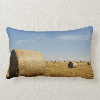 Hay bundle of photography cushion