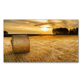 Hay Business Card Magnet