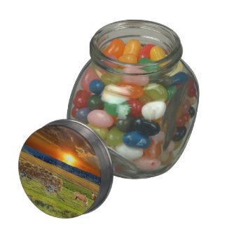 Hay car glass candy jar