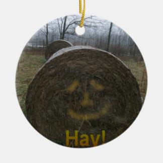 Hay! Ceramic Ornament