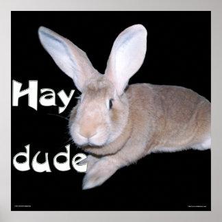 Hay Dude Posters
