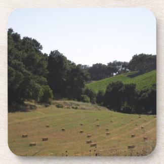 Hay Field Below Vineyard in Paso Robles Drink Coaster