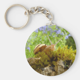hay for snail day! basic round button keychain