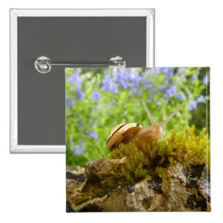 hay for snail day! 2 inch square button