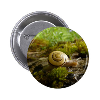 hay for snail day! pinback button