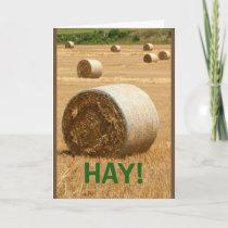 HAY! Happy Anniversary Card