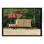 Hay! Happy Birthday Card