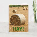 HAY!  Happy Birthday Card