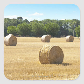 Hay in the Field, France Square Stickers