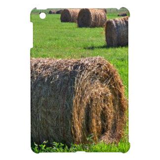 Hay iPad Mini Covers