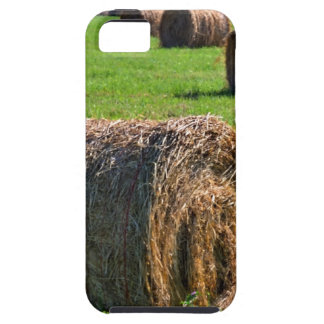 Hay iPhone SE/5/5s Case