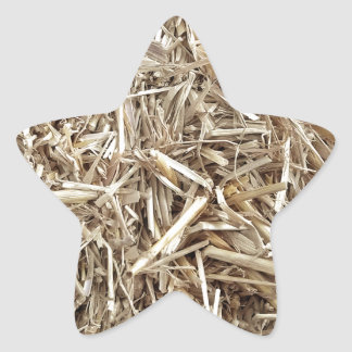 Hay! Is that a..? What's that? Barnyard Ninja Camo Star Sticker