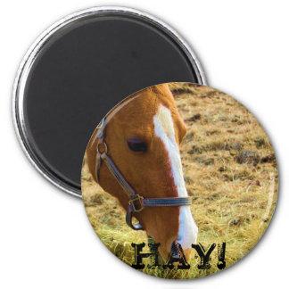 Hay! Magnet
