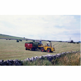 Hay-making, Derbyshire, England at the Cornish Riv Photo Cut Out