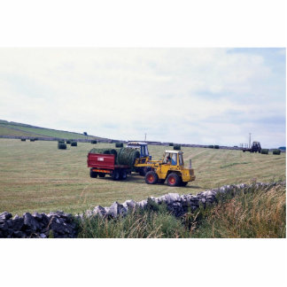 Hay-making, Derbyshire, England at the Cornish Riv Photo Sculpture