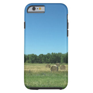 Hay Now Phone Case - Frost Hill Farms