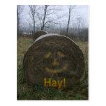 Hay! Postcards