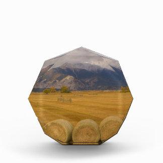 Hay Rolls Acrylic Award