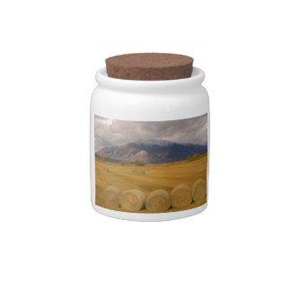 Hay Rolls Candy Jar