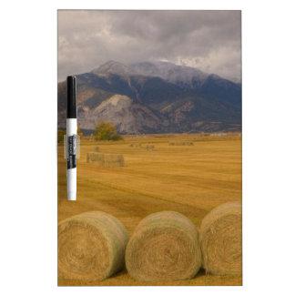 Hay Rolls Dry-Erase Whiteboard