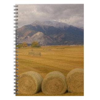 Hay Rolls Notebook