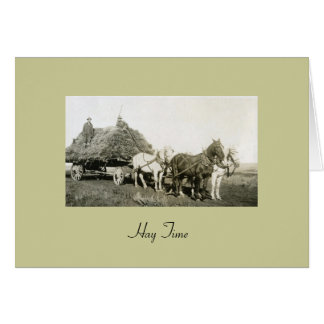 Hay Time Stationery Note Card