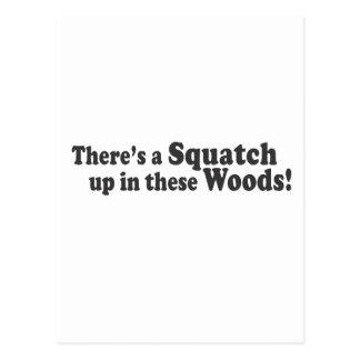¡Hay un Squatch para arriba en estas maderas! Tarjetas Postales