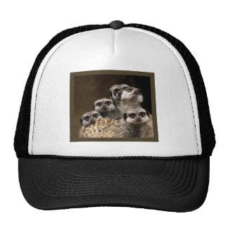 Hay uno en cada muchedumbre… gorras de camionero
