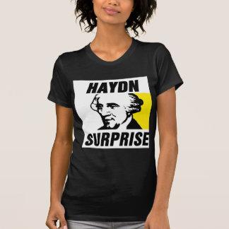 Haydn Camisas
