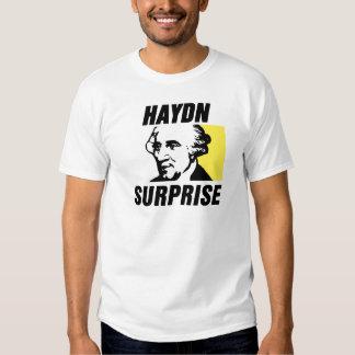 Haydn Playera