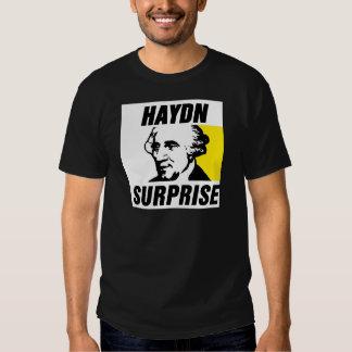 Haydn Playeras