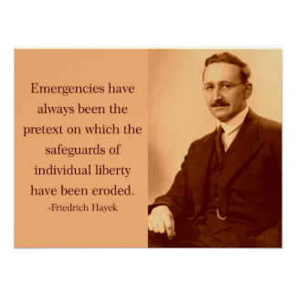 Hayek on Emergencies Poster