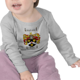 HAYES FAMILY CREST -  HAYES COAT OF ARMS TSHIRT