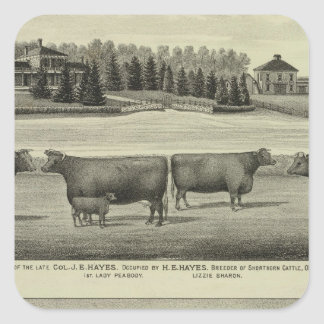 Hayes, Olathe, and Ellis Residence and Farm Square Sticker