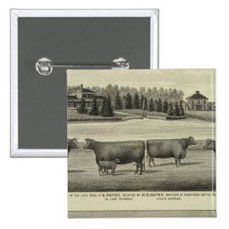 Hayes, Olathe, y residencia y granja de Ellis Pin Cuadrada 5 Cm