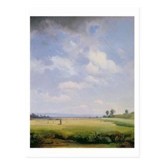 Haymaking, 1838 (oil on canvas) postcard