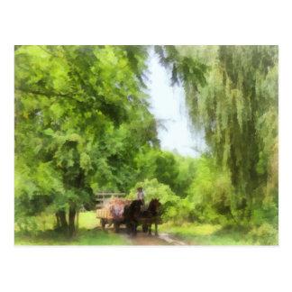 Hayride Postcard