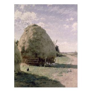 Haystacks Postcard