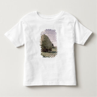 Haystacks Toddler T-shirt