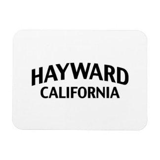 Hayward California Flexible Magnet