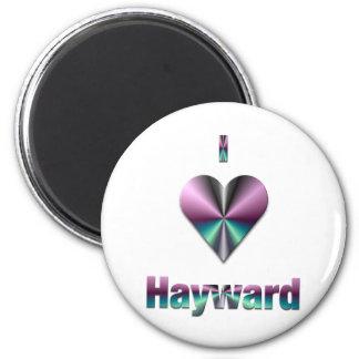 Hayward -- Purple & Turquoise Magnet