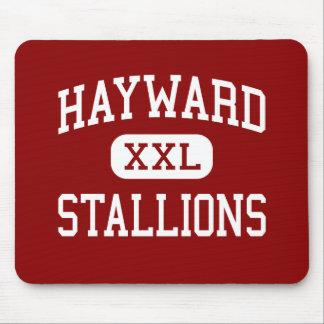 Hayward - Stallions - Middle - Springfield Ohio Mouse Pad