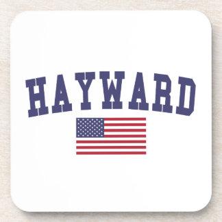 Hayward US Flag Beverage Coaster