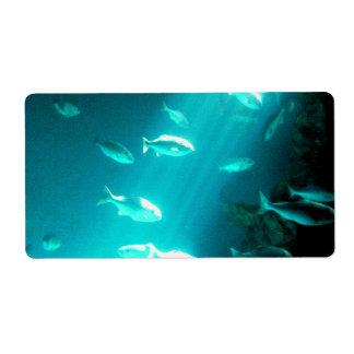 Haz de natación subacuática de los pescados de la  etiquetas de envío