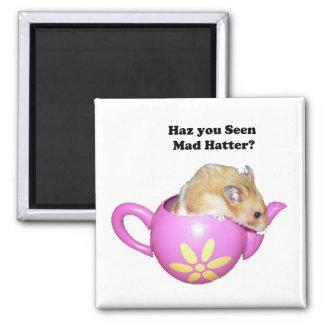 Haz You Seen Mad Hatter Dormouse Hamster Photo Fridge Magnet