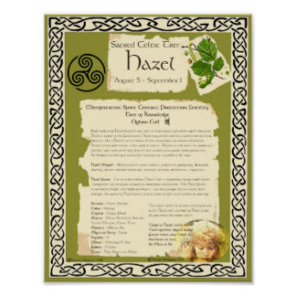HAZEL CELTIC SACRED TREE POSTER