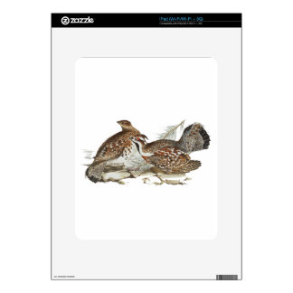 Hazel Grouse Decals For iPad