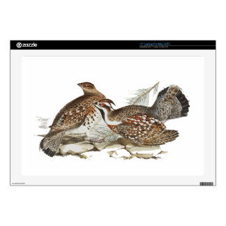 Hazel Grouse Decals For Laptops