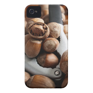 Hazelnuts and tool iPhone 4 cover