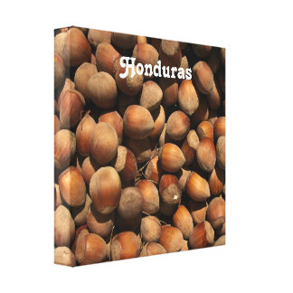 Hazelnuts Gallery Wrapped Canvas